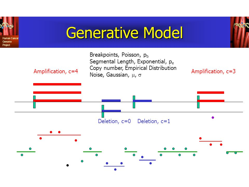 Human Cancer Genome Project Generative Model Amplification, c=4Amplification, c=3 Deletion, c=0Deletion, c=1 Breakpoints, Poisson, p b Segmental Length, Exponential, p e Copy number, Empirical Distribution Noise, Gaussian, , 