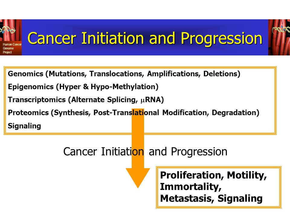 Human Cancer Genome Project Cancer Initiation and Progression Genomics (Mutations, Translocations, Amplifications, Deletions) Epigenomics (Hyper & Hypo-Methylation) Transcriptomics (Alternate Splicing,  RNA) Proteomics (Synthesis, Post-Translational Modification, Degradation) Signaling Proliferation, Motility, Immortality, Metastasis, Signaling