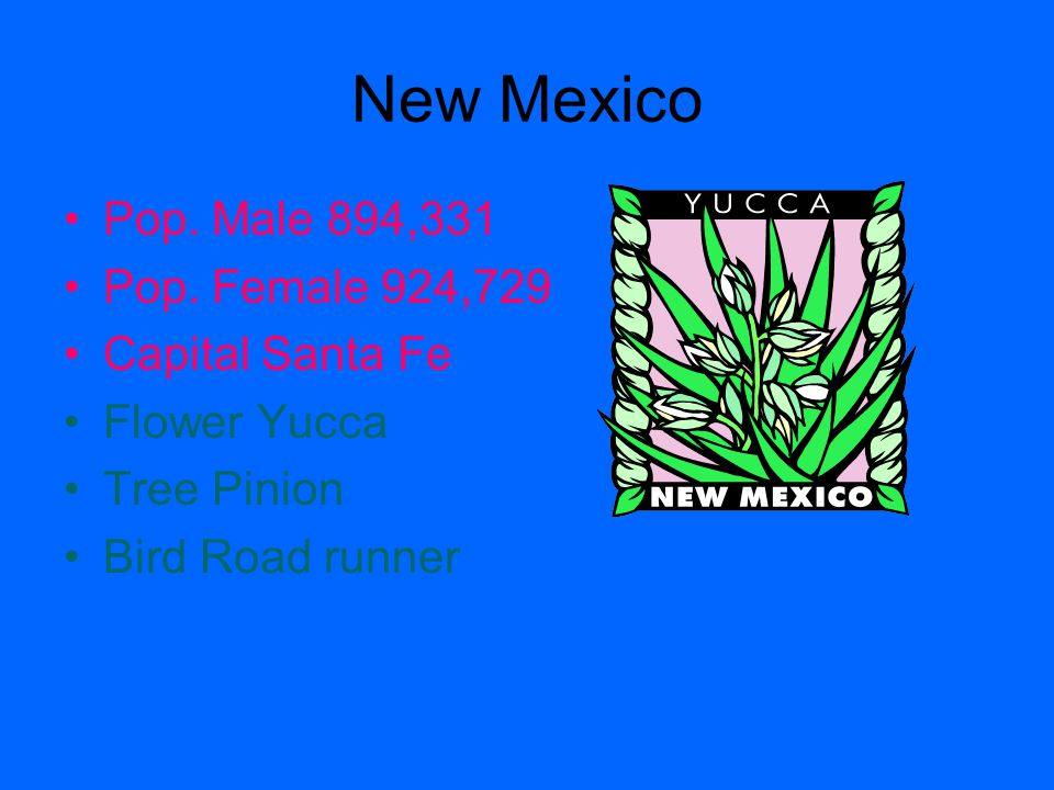 New Mexico Pop. Male 894,331 Pop. Female 924,729 Capital Santa Fe Flower Yucca Tree Pinion Bird Road runner