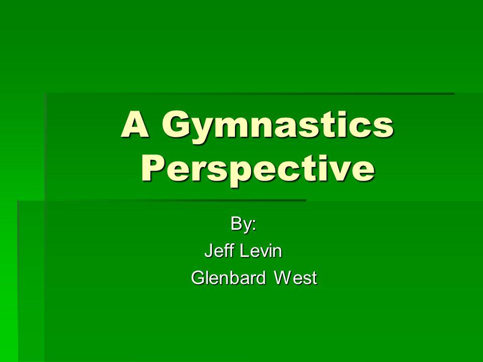 A Gymnastics Perspective By: Jeff Levin Glenbard West Glenbard West