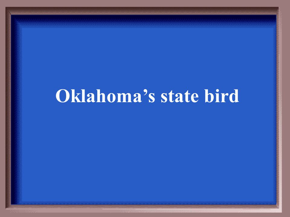 Oklahoma's state bird
