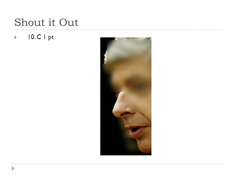 Shout it Out  10. C 1 pt