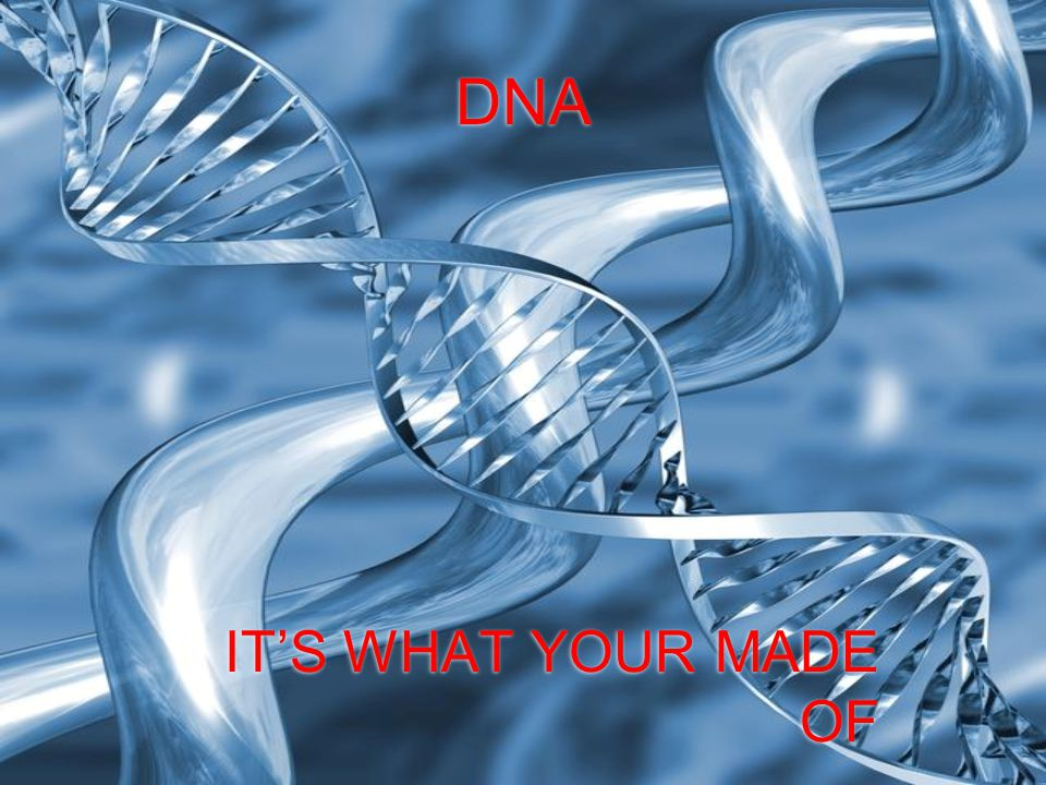 DNA IT'S WHAT YOUR MADE OF