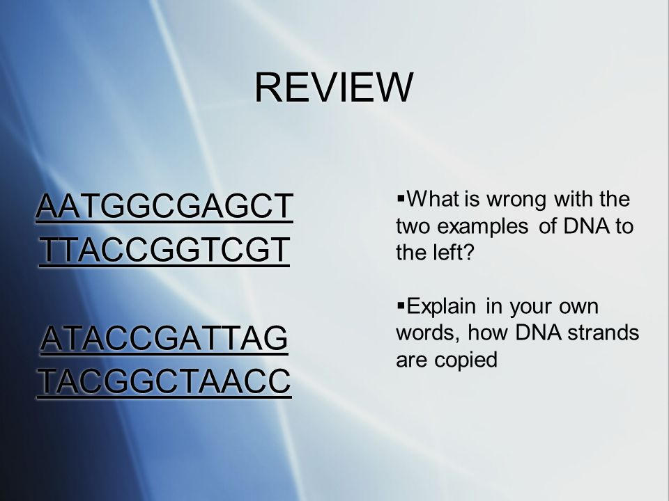 REVIEW AATGGCGAGCT TTACCGGTCGT ATACCGATTAG TACGGCTAACC AATGGCGAGCT TTACCGGTCGT ATACCGATTAG TACGGCTAACC  What is wrong with the two examples of DNA to