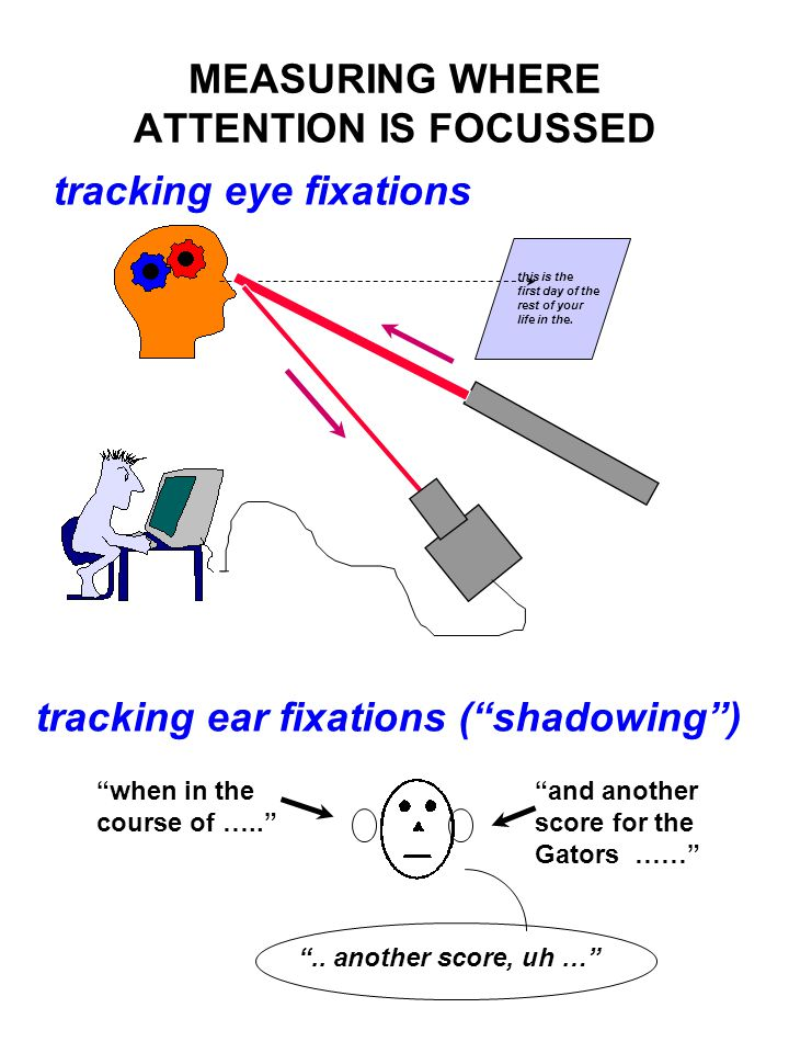"MEASURING WHERE ATTENTION IS FOCUSSED tracking eye fixations tracking ear fixations (""shadowing"") this is the first day of the rest of your life in th"