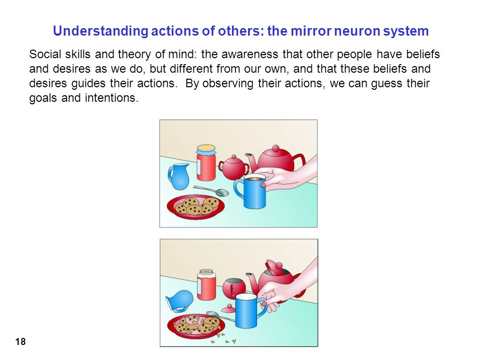 18 Understanding actions of others: the mirror neuron system Social skills and theory of mind: the awareness that other people have beliefs and desires as we do, but different from our own, and that these beliefs and desires guides their actions.