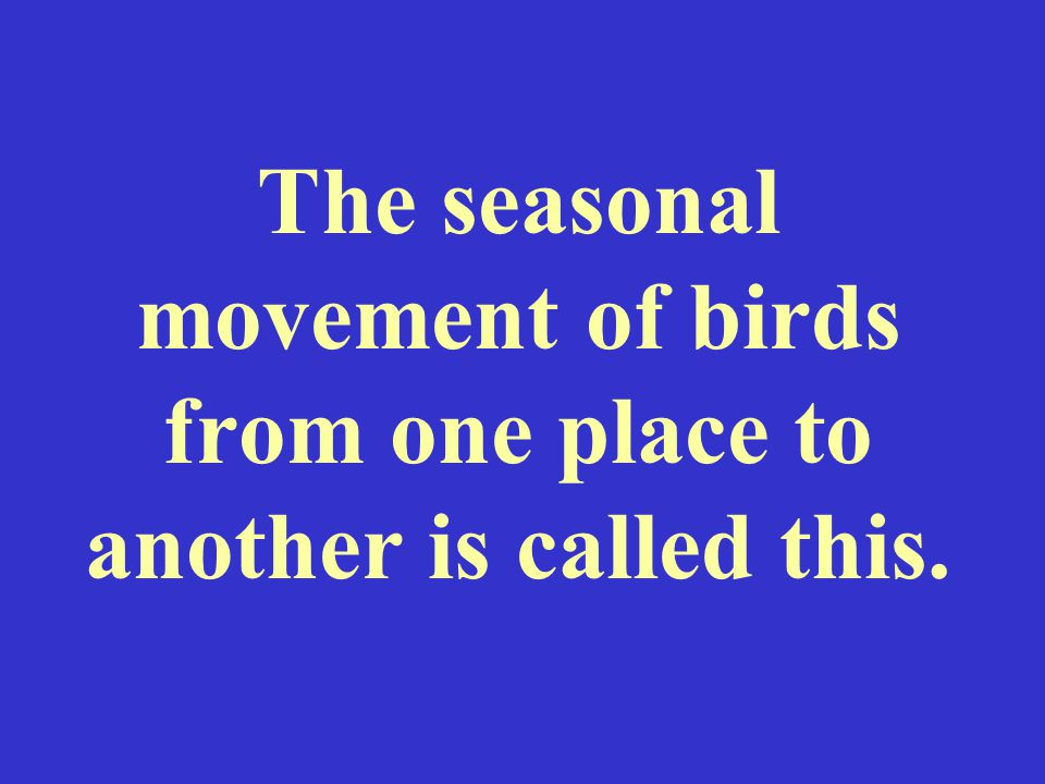 The seasonal movement of birds from one place to another is called this.