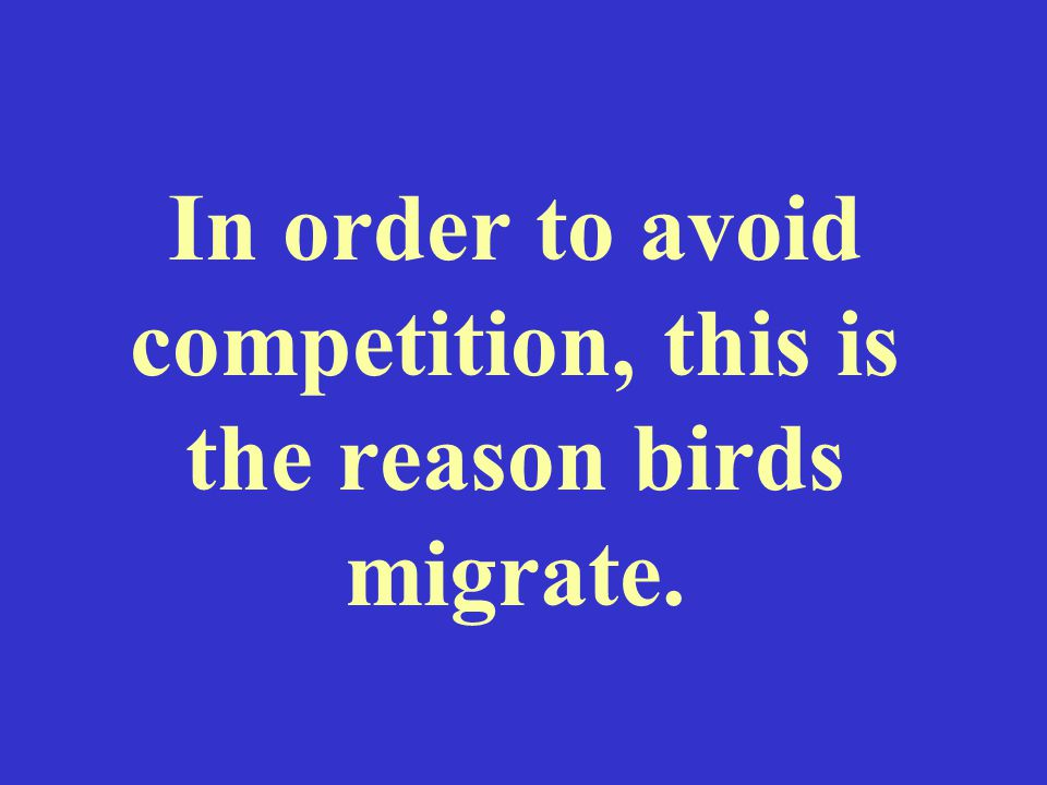 In order to avoid competition, this is the reason birds migrate.