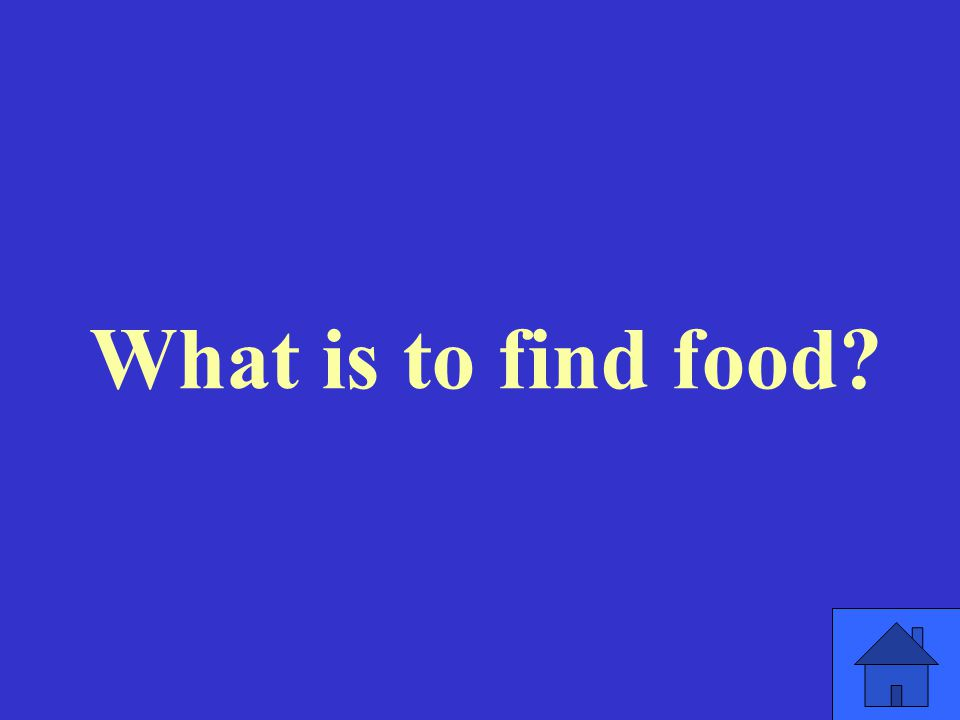 What is to find food