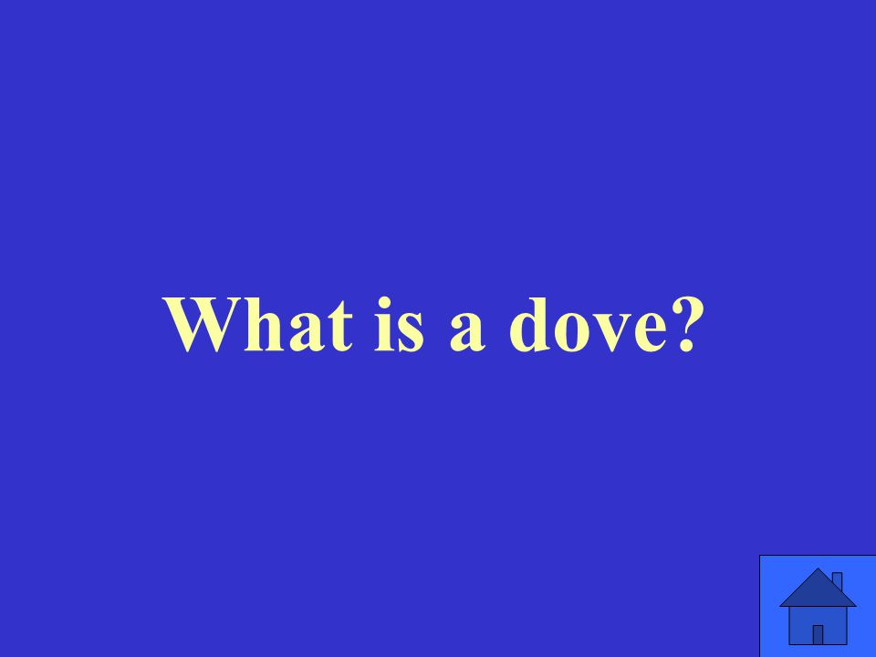 What is a dove