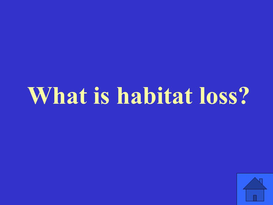 What is habitat loss