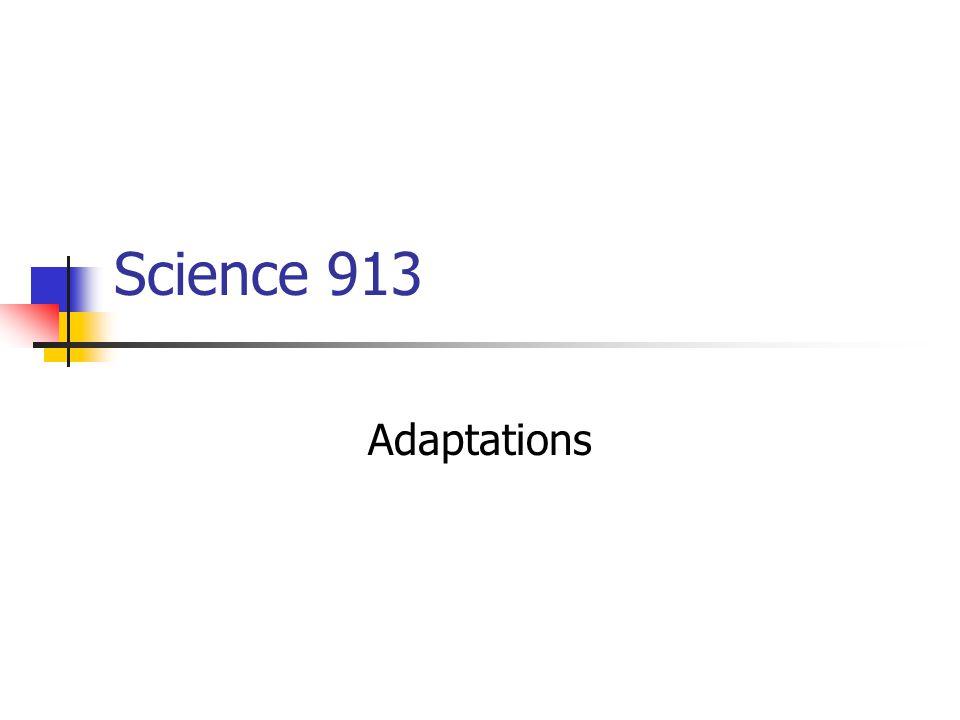 Science 913 Adaptations