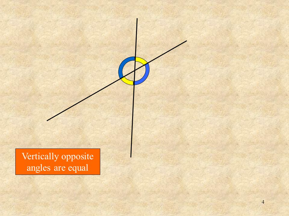 14 Here are two different sets of parallel lines … and their transversals Lets put them together ….