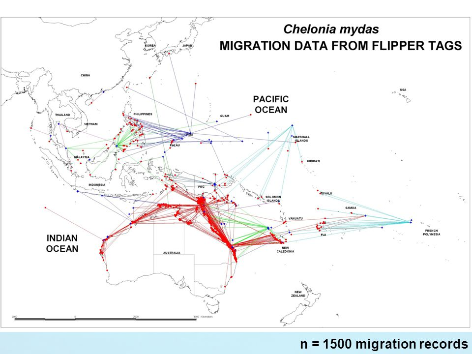 n = 1500 migration records