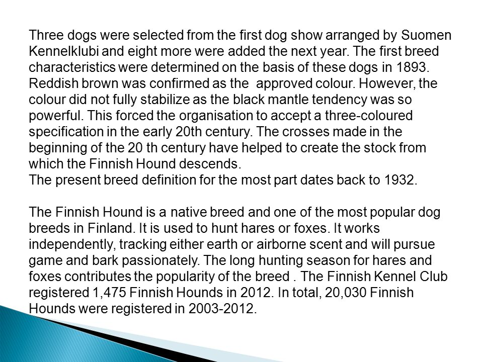 Three dogs were selected from the first dog show arranged by Suomen Kennelklubi and eight more were added the next year. The first breed characteristi