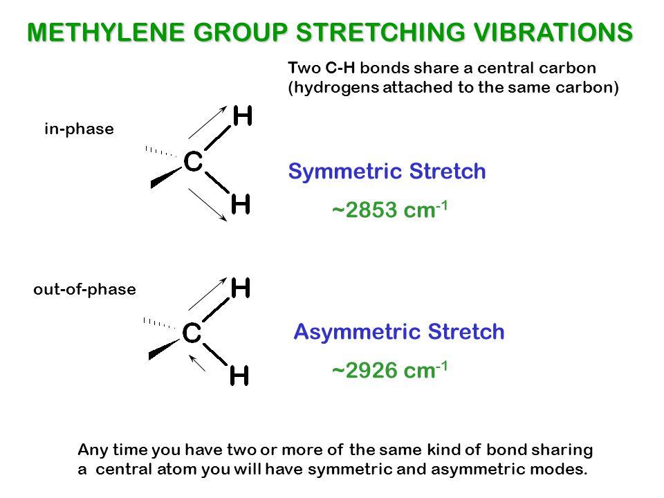 1-Hexyne C=C = =C-H = C-H CH 2, CH 3 ALKYNE