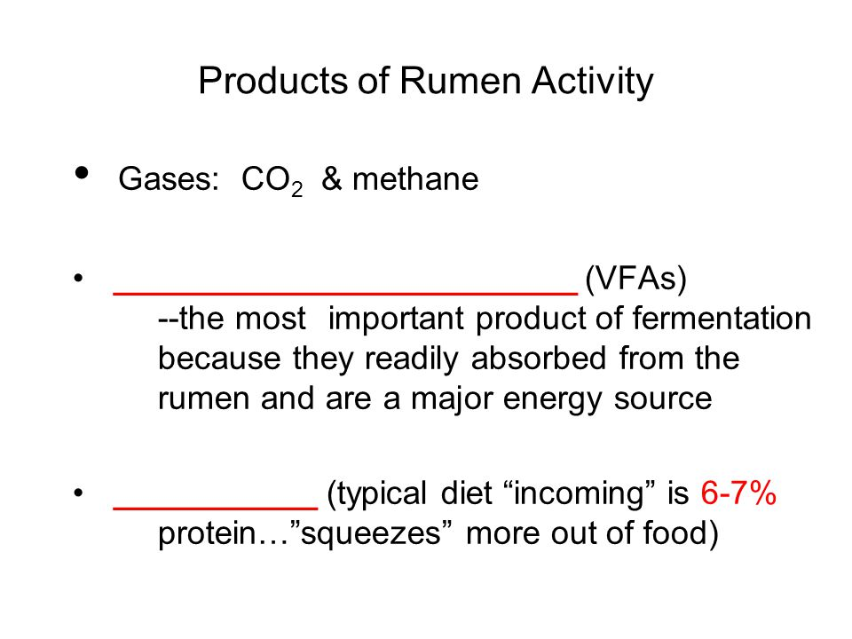 Products of Rumen Activity Gases: CO 2 & methane _________________________ (VFAs) --the most important product of fermentation because they readily absorbed from the rumen and are a major energy source ___________ (typical diet incoming is 6-7% protein… squeezes more out of food)