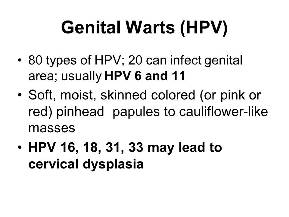 Genital Warts (HPV) 80 types of HPV; 20 can infect genital area; usually HPV 6 and 11 Soft, moist, skinned colored (or pink or red) pinhead papules to cauliflower-like masses HPV 16, 18, 31, 33 may lead to cervical dysplasia