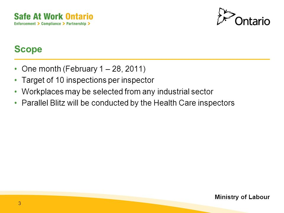 Ministry of Labour 3 Scope One month (February 1 – 28, 2011) Target of 10 inspections per inspector Workplaces may be selected from any industrial sec