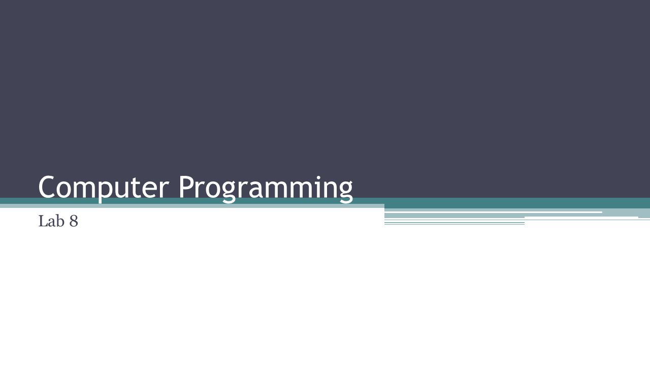 Computer Programming Lab 8