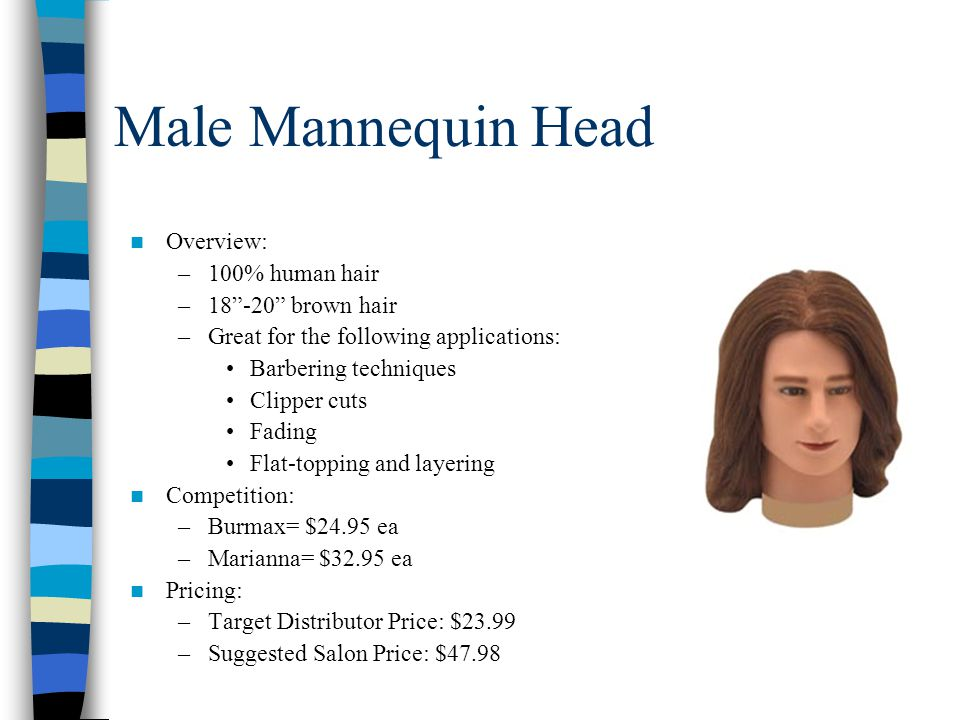 Male Mannequin Head Overview: –100% human hair –18 -20 brown hair –Great for the following applications: Barbering techniques Clipper cuts Fading Flat-topping and layering Competition: –Burmax= $24.95 ea –Marianna= $32.95 ea Pricing: –Target Distributor Price: $23.99 –Suggested Salon Price: $47.98