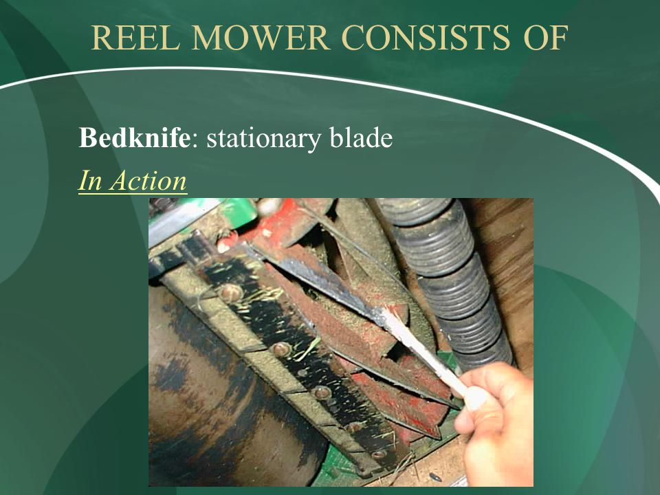 REEL MOWER CONSISTS OF Bedknife: stationary blade In Action