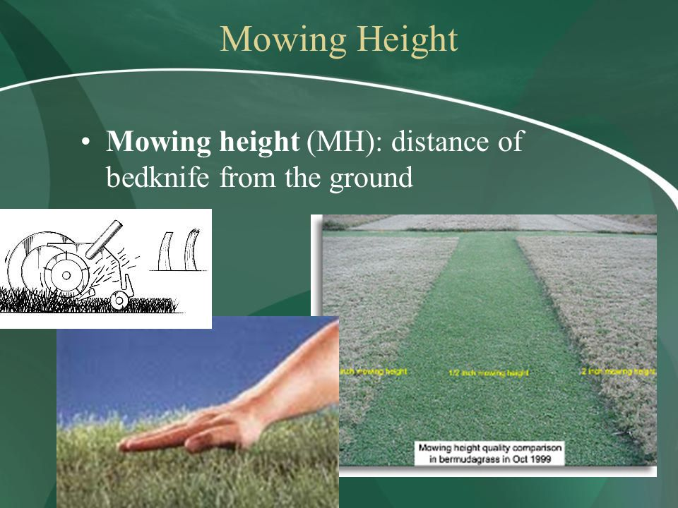 Mowing Height Mowing height (MH): distance of bedknife from the ground