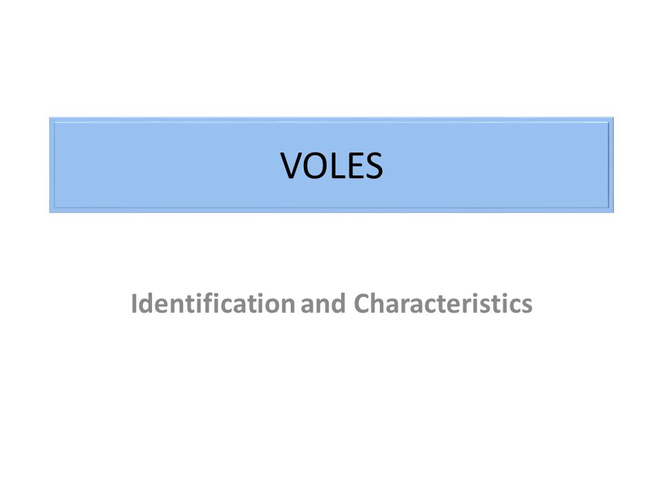 VOLES Identification and Characteristics
