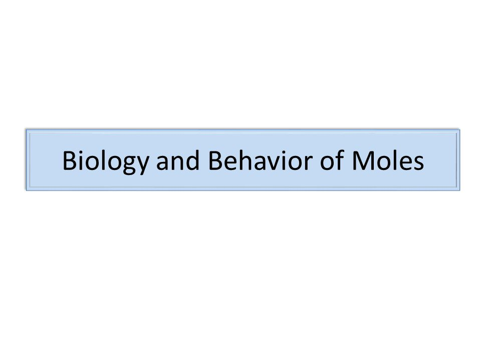 Biology and Behavior of Moles