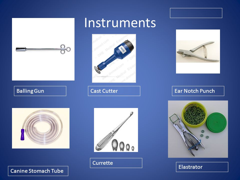 Instruments Emasculator Hoof Nippers Endotracheal Tube Foot Rot Shears IV catheter Hoof knife