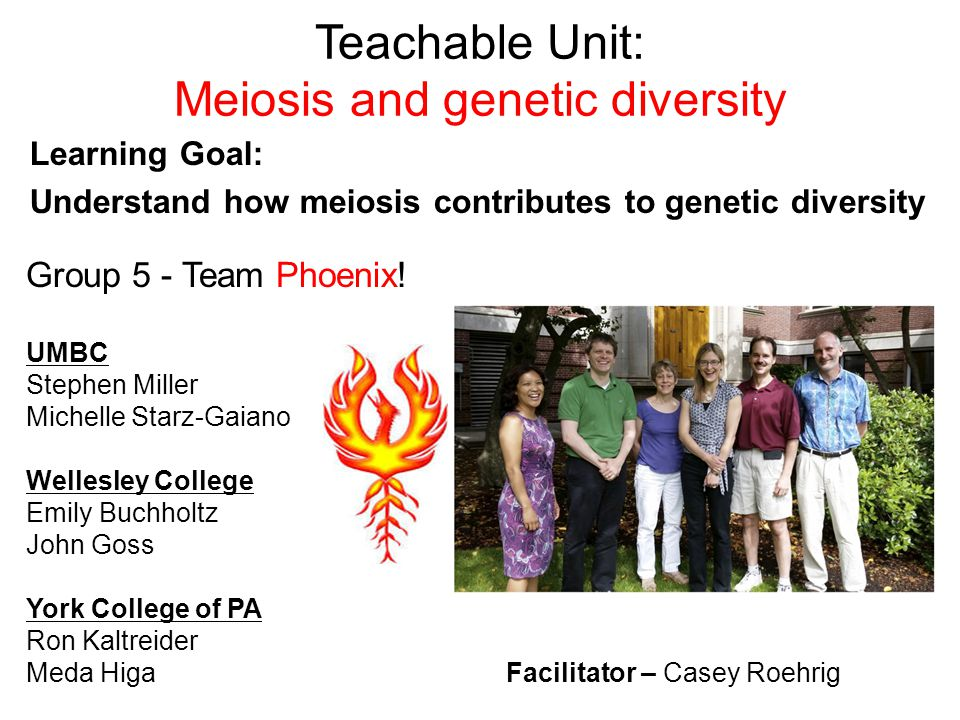 Teachable Unit: Meiosis and genetic diversity Learning Goal: Understand how meiosis contributes to genetic diversity Group 5 - Team Phoenix! UMBC Step