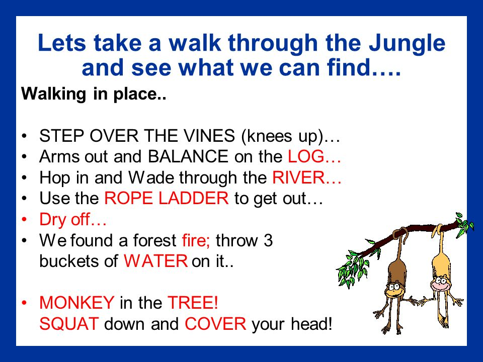 Lets take a walk through the Jungle and see what we can find….
