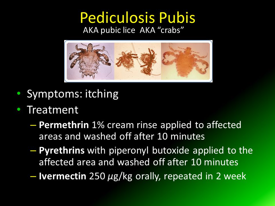 Pediculosis Pubis Symptoms: itching Treatment – Permethrin 1% cream rinse applied to affected areas and washed off after 10 minutes – Pyrethrins with piperonyl butoxide applied to the affected area and washed off after 10 minutes – Ivermectin 250 μg/kg orally, repeated in 2 week AKA pubic lice AKA crabs