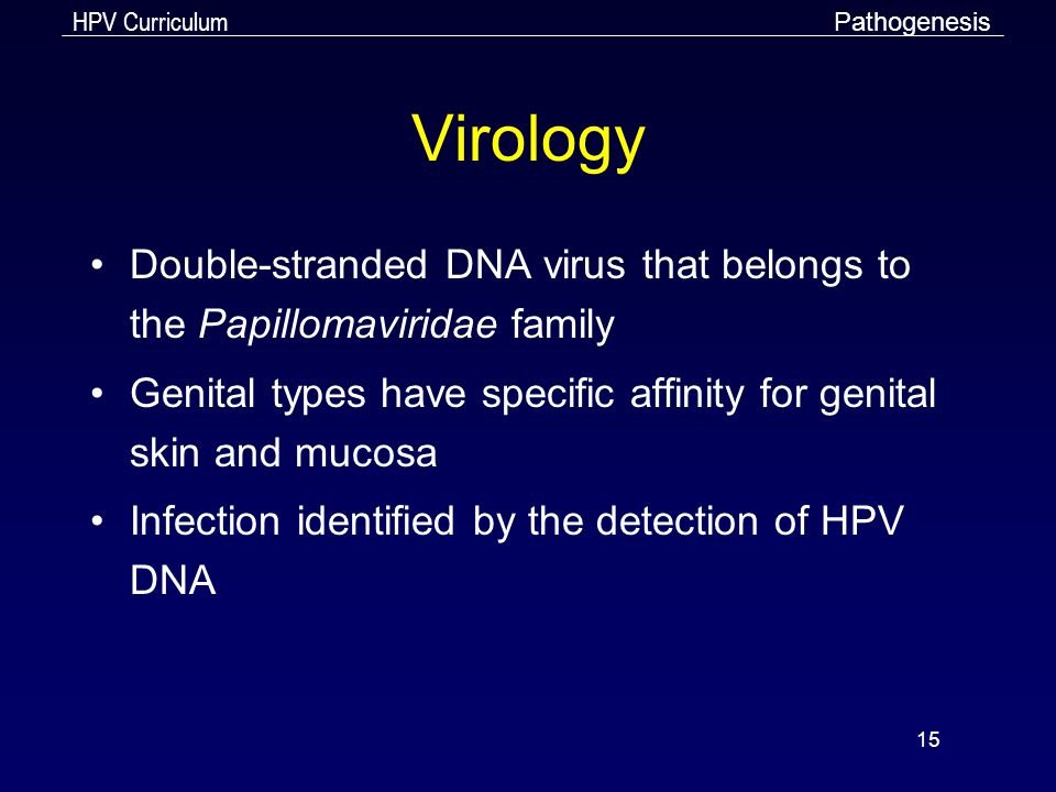 HPV Curriculum 15 Virology Double-stranded DNA virus that belongs to the Papillomaviridae family Genital types have specific affinity for genital skin