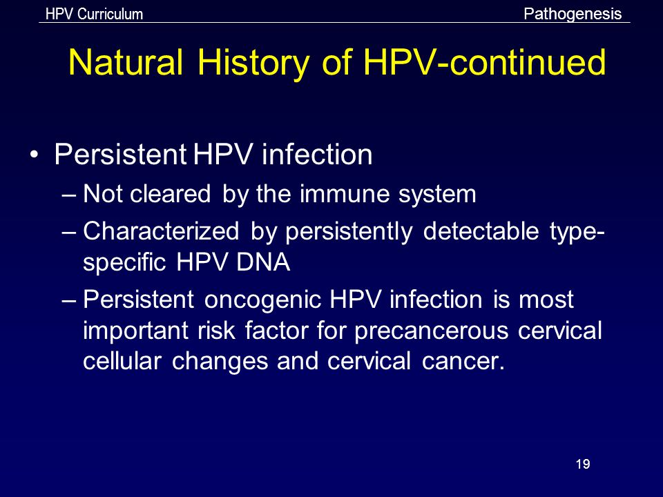 HPV Curriculum 19 Natural History of HPV-continued Persistent HPV infection –Not cleared by the immune system –Characterized by persistently detectabl