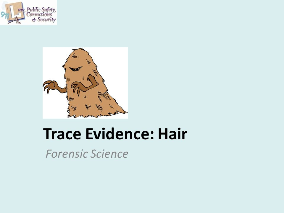 Trace Evidence: Hair Forensic Science
