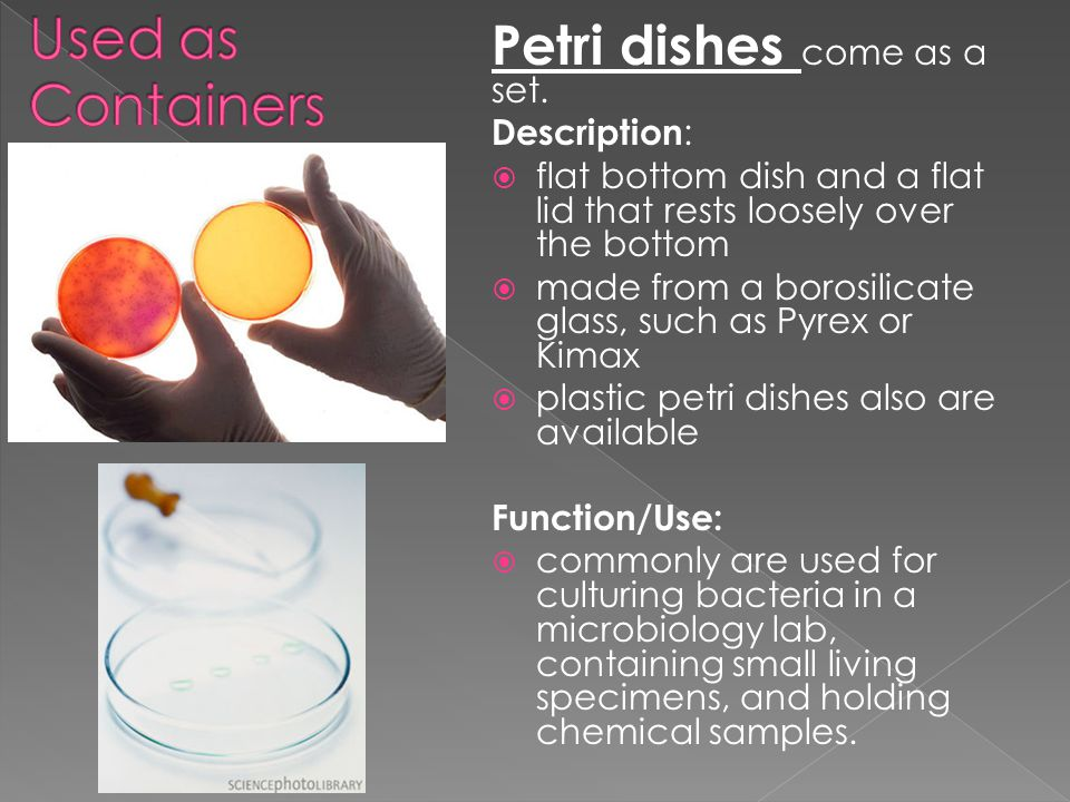 Petri dishes come as a set. Description :  flat bottom dish and a flat lid that rests loosely over the bottom  made from a borosilicate glass, such