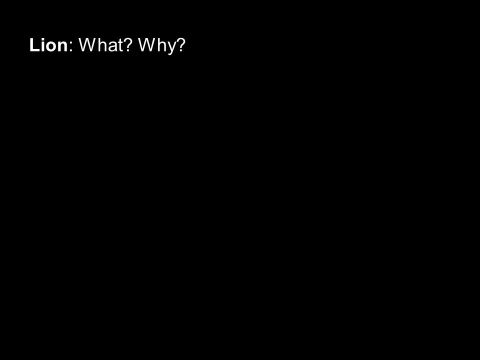 Lion: What Why