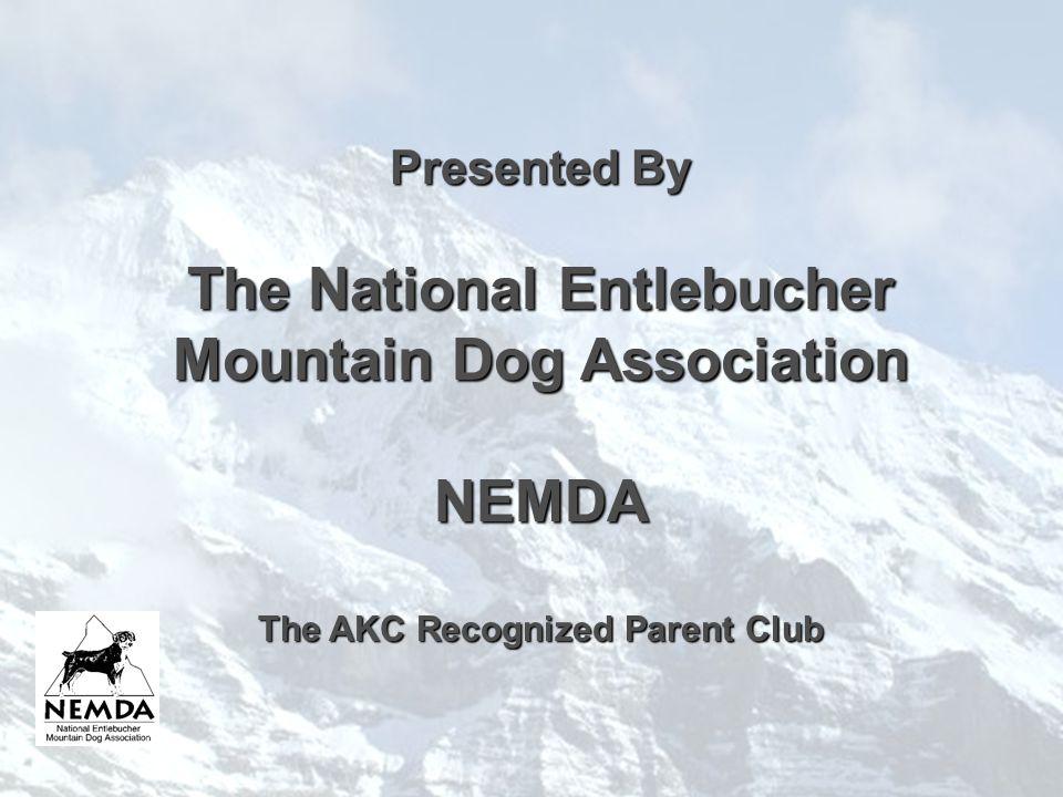 THEENTLEBUCHER MOUNTAIN DOG