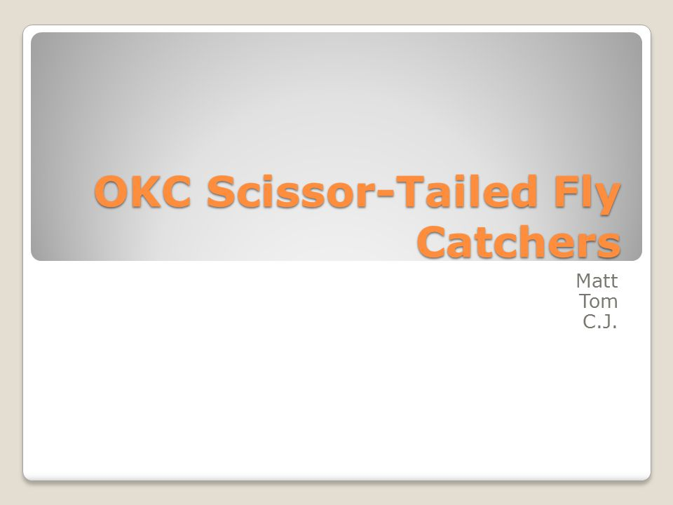 OKC Scissor-Tailed Fly Catchers Matt Tom C.J.