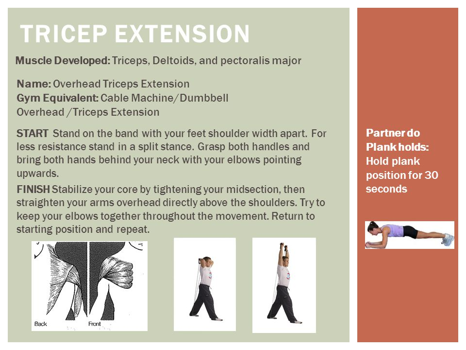 Muscles Developed: Posterior Deltoid, rhomboids, trapezius STANDING ROWS Upper Body Exercise: Standing 2 arm back row Gym Equivalent: Cable/Stationary Machine Back Row/Dumbbell Rows START Stand with your front foot on the band and back foot behind your body.