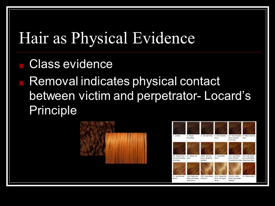Hair Collection ■ Collected from crime scene by plucking, shaking and scraping surfaces ■ Use tape over small surfaces ■ Vacuum large surfaces ■ Initial analysis performed under compound microscope ■ Collect 50 hairs from suspect for comparison.