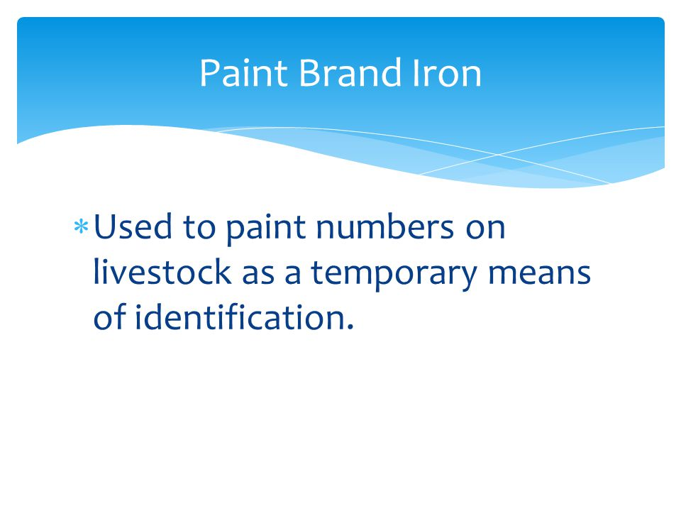  Used to paint numbers on livestock as a temporary means of identification. Paint Brand Iron
