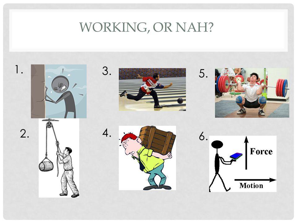 WORKING, OR NAH? 1. 2. 3. 4. 5. 6. Not Work Work