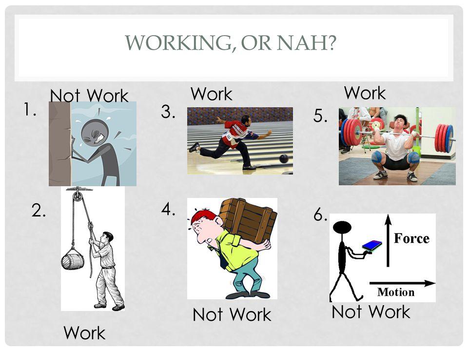 WORKING, OR NAH 1. 2. 3. 4. 5. 6. Not Work Work