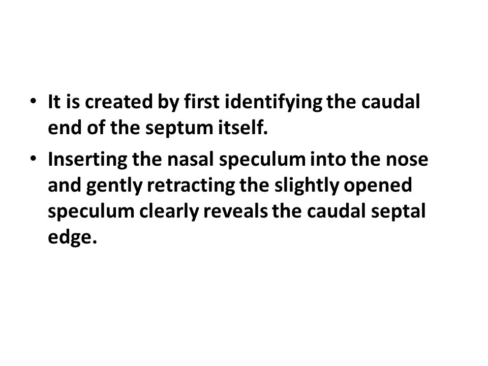 It is created by first identifying the caudal end of the septum itself. Inserting the nasal speculum into the nose and gently retracting the slightly