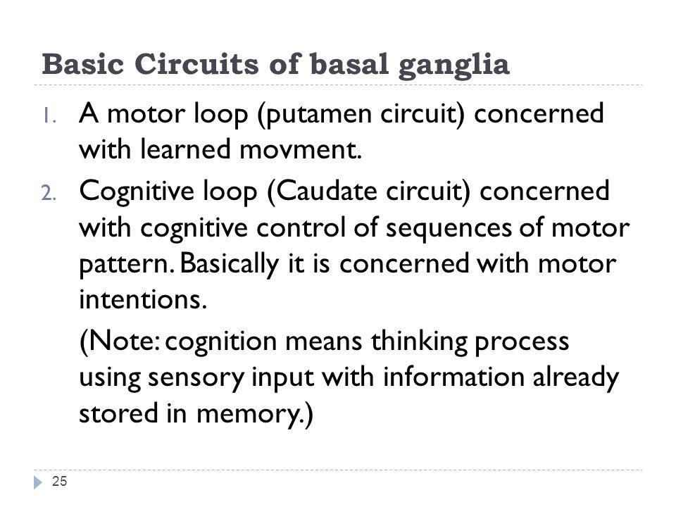 Basic Circuits of basal ganglia 25 1.