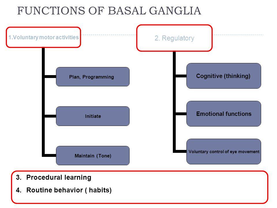 FUNCTIONS OF BASAL GANGLIA 33 1.Voluntary motor activities Plan, Programming Initiate Maintain (Tone) 2.