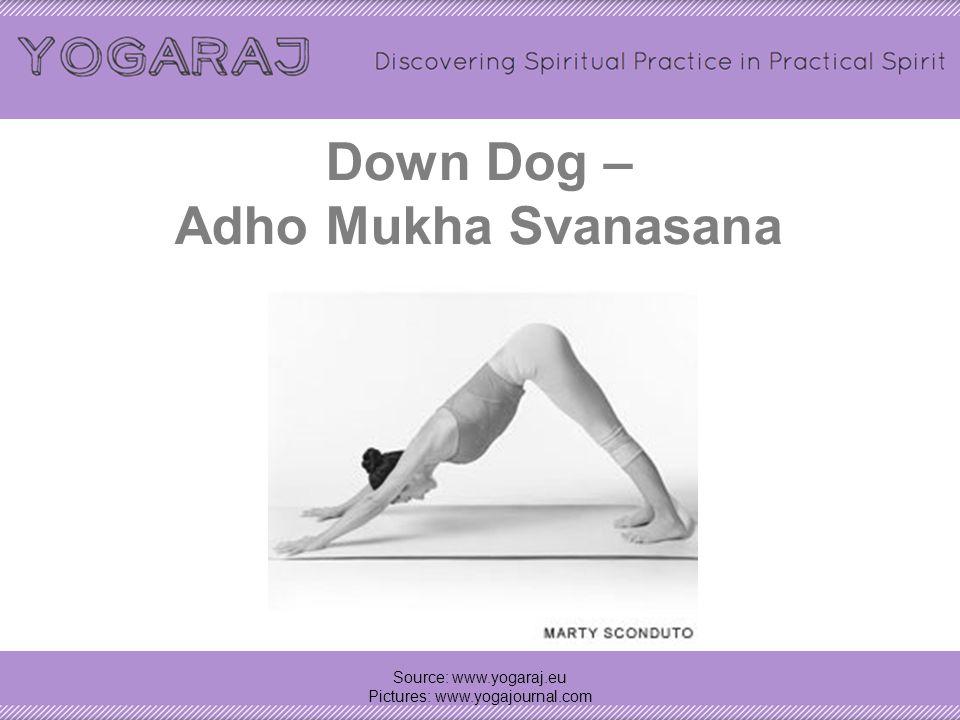 Vinyasa = Plank + Chaturanga + Up Dog/cobra - Uttihita Chaturanga dandasana + Chaturanga Dandasana + Urdhva Mukha Svanasana/Bhujangasana Source: www.y