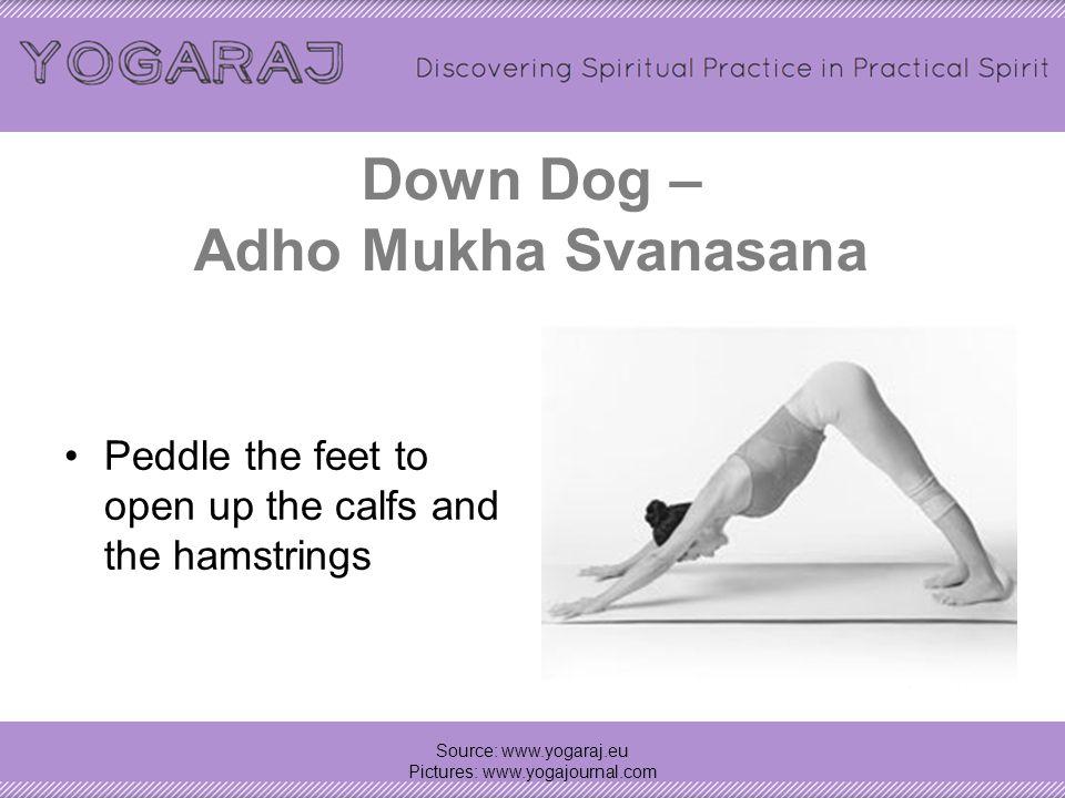 Down Dog – Adho Mukha Svanasana Source: www.yogaraj.eu Pictures: www.yogajournal.com